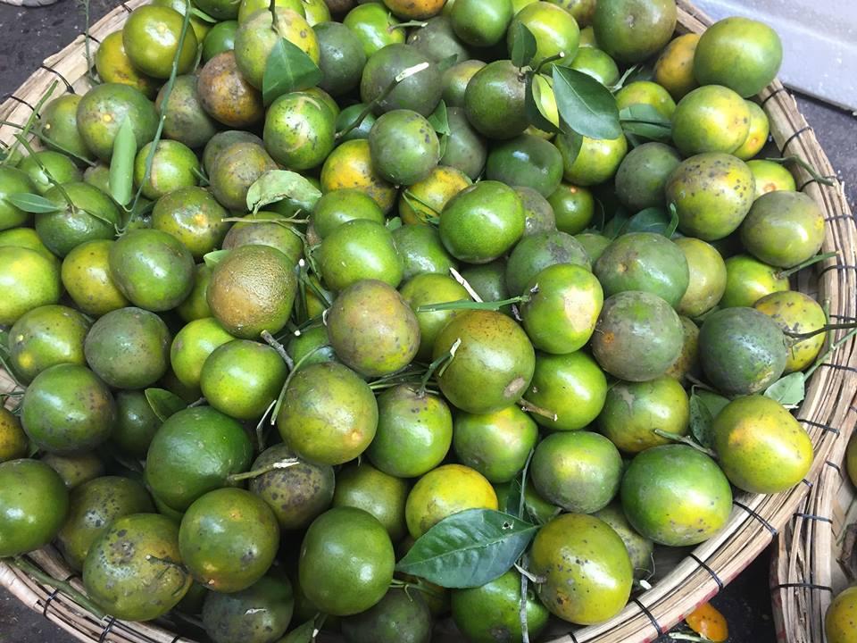 Nhìn giống chanh nhưng ngọt như đường, loại quả giá rẻ này đang gây 'sốt' thị trường Đà Nẵng