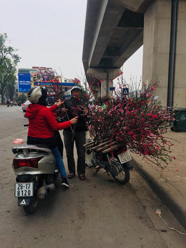 Đào Nhật Tân xuống phố phục vụ cúng rằm tháng Chạp có giá rẻ bất ngờ