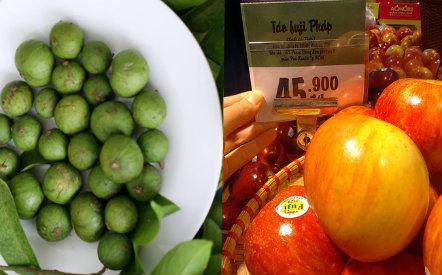 Trái sấu đầu mùa đắt hơn cả hoa quả khẩu nhập khẩu