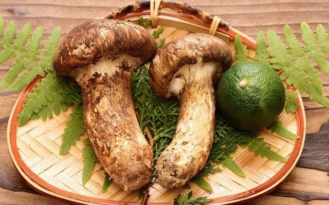 Giới nhà giàu Việt chi vài chục triệu đồng mua một kg nấm matsutake Nhật Bản về ăn