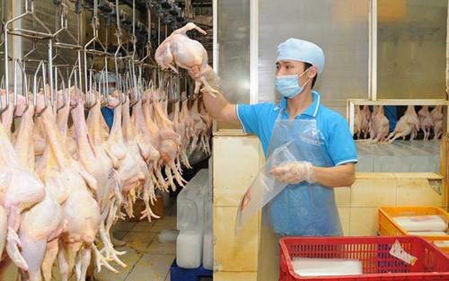 Giá thịt gà, cá, thủy hải sản tăng mạnh tại TP.HCM
