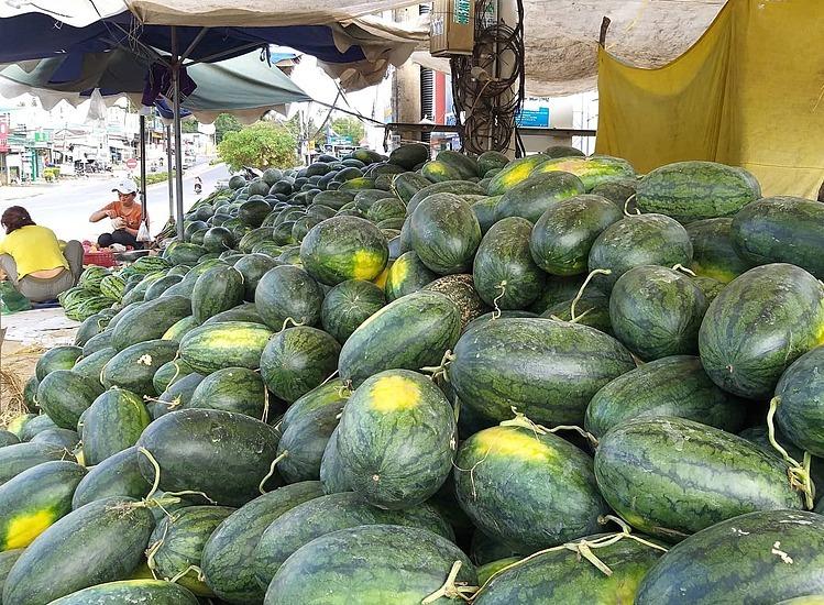 Dịch Corona tác động tiêu cực đến xuất khẩu nông sản