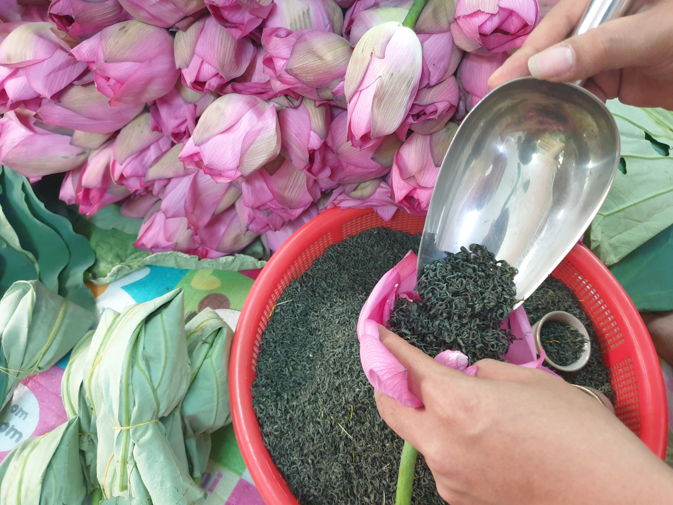 Nhờ công nghệ ướp đặc biệt, trà sen Việt vươn ra thế giới