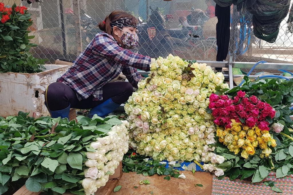 100 triệu cành hoa, 130 tấn bơ ở Lâm Đồng cần được hỗ trợ tiêu thụ