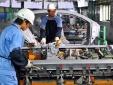 'Đừng mơ nước ngoài làm ô tô cho Việt Nam'