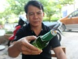 Ngày mai có kết quả kiểm tra chất lượng bia Henineken đóng nắp Tiger