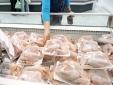 Hơn 70% thịt gà bán tại Anh nhiễm khuẩn gây tiêu chảy
