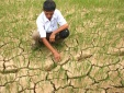 Nắng nóng kỷ lục ở miền Trung: Người dân khốn khổ