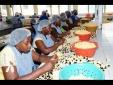 Jamica: Thay đổi mô hình kinh doanh chính để tăng năng suất lao động