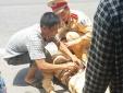 Hà Tĩnh: Hai kẻ tông xe vào cảnh sát giao thông từng có tiền án