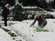 Chuyên gia khuyến cáo gì về đợt rét lạnh bất thường tại Sa Pa