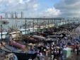 Hàng chục nghìn tàu cá Trung Quốc ồ ạt kéo ra Biển Đông