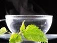 Giảm cân, thanh lọc cơ thể hiệu quả nhờ uống nước ấm mỗi ngày
