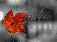 Dự báo thời tiết ngày mai 5/10: Có mưa rào và dông vài nơi, gió nhẹ