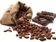 Bất ngờ với công dụng điều trị tiểu đường từ cacao và trà xanh
