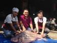 Cá trà sóc khổng lồ giá trăm triệu lọt lưới ngư dân miền Tây