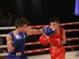 Hai võ sĩ trẻ đốt nóng võ đài trận bán kết 'Giải Boxing, võ cổ truyền 2015'