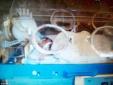 Bé sơ sinh 'sống lại' sau 15 giờ trong nhà xác