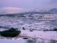 Tìm hiểu chiến xa bộ binh Puma hiện đại nhất thế giới của Đức