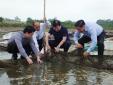 Khẩn trương xác định nguyên nhân thủy, hải sản chết bất thường ở Hà Tĩnh
