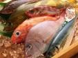 Làm sao để phân biệt cá biển tươi và cá biển nhiễm độc?
