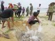 Tin tức thời sự 24h ngày 30/4: NHNN sẽ hỗ trợ ngư dân bị ảnh hưởng do cá chết