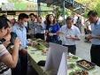 Lãnh đạo tỉnh Thừa Thiên Huế cùng ăn cá biển với dân