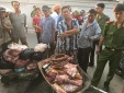 Tin an toàn thực phẩm hot ngày 3/5: 'Hô biến' thịt heo nái thành heo rừng