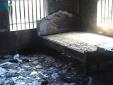 Vụ cháy 3 người chết ở Nghê An: Xác định nguyên nhân ban đầu