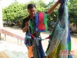'Vật thể lạ' bay lơ lửng ở Nghệ An: người dân sợ hãi, không dám ra khỏi nhà