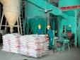 Xí nghiệp Xi măng 406 đẩy mạnh áp dụng 7 công cụ thống kê