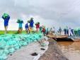 Đồng bằng sông Cửu Long: Lấy vụ sau bù thất bát vụ trước