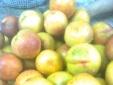 'Tắm' phèn chua cho quả đào tươi bắt mắt