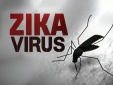 Mỹ công bố thử nghiệm thành công vắcxin phòng chống virus Zika trên động vật