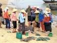 Thông cáo báo chí của Chính phủ về sự cố cá chết 4 tỉnh miền Trung