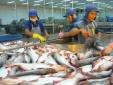 Trung Quốc đứng top 3 thị trường ăn cá tra Việt Nam