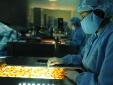'Khai tử' 12 công ty dược nước ngoài có thuốc vi phạm chất lượng