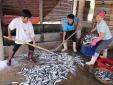 'Điểm mặt' những loại hải sản chưa an toàn ở 4 tỉnh miền Trung