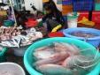 TP HCM: Thủy sản nhiễm hóa chất cấm vẫn ở mức cao