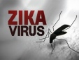 TP.HCM đã có 20 thai phụ nhiễm virus Zika