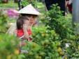 'Hoa cười' nông dân khóc: Chỉ công nghệ mới thay được ông trời!
