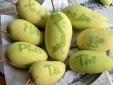 Loạt trái cây khắc chữ độc đáo nhất thị trường Tết Đinh Dậu 2017