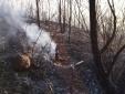 Tỉnh Quảng Ninh thông tin về vụ cháy lớn gần chùa Lôi Âm
