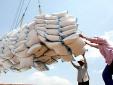 Tốn 20.000 USD xin giấy phép xuất khẩu gạo: Bộ Công Thương xác minh