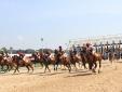 Cận cảnh trường đua ngựa hơn 2 nghìn tỷ của đại gia Bình Dương