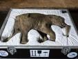 2 năm nữa, loài động vật tuyệt chủng hàng ngàn năm sẽ được hồi sinh?