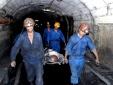 'Điều tra từng chi tiết' vụ công nhân than Nam Mẫu tử vong