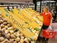 Nhập nhèm thực phẩm hữu cơ
