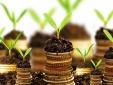 Nguyên tắc đầu tư 'ăn tiền' của chủ tịch quỹ đầu cơ lớn nhất thế giới