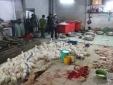 Đề xuất nông dân TP. HCM phải đăng ký trồng gì, phân bón như thế nào mới được sản xuất